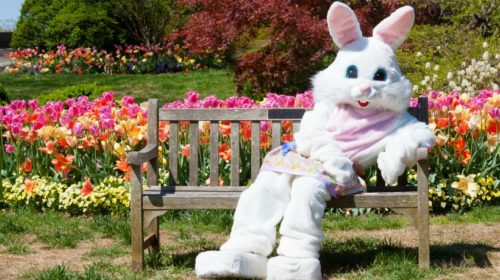 Easter, Easter Activities, Calgary, Events, Easter 2019
